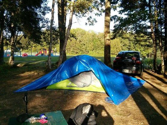 Smuggler's Den Campground: Campsite 62
