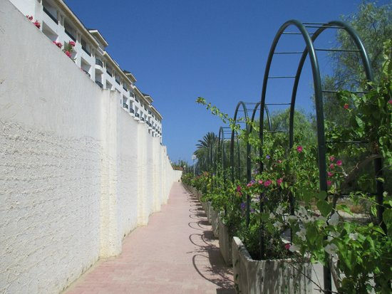 Royal Kenz Hotel Thalasso & Spa: Walk down to the beach