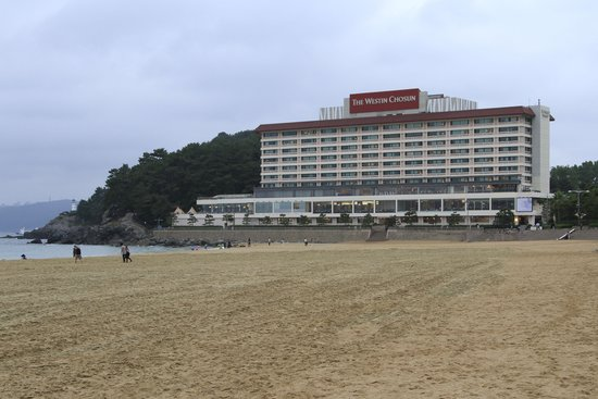 Beach Across Street From Haeundae Grand Hotel Is Very Good Sand