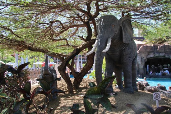 Lopesan Baobab Resort : elephants