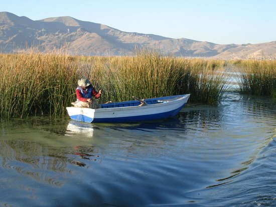 Lake Titicaca: Lake