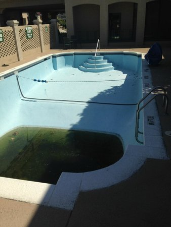Clarion Hotel Downtown : Pool - drained and gross