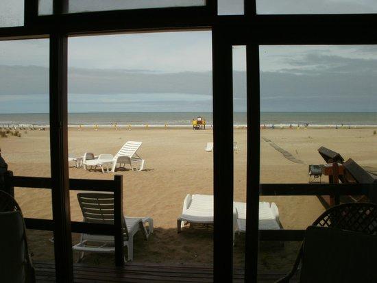 Rincon Del Mar Apart Hotel Spa & Resort: Vista desde la habitacion en planta baja