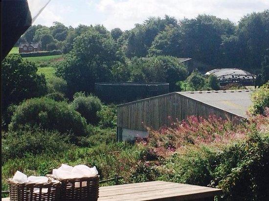 Butterleigh, UK: Farm View