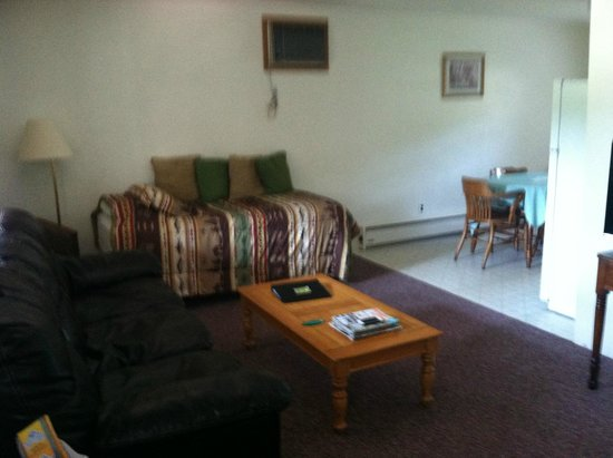 Yough Plaza Motel: living room has a single bed
