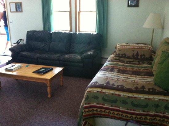 Yough Plaza Motel: living room