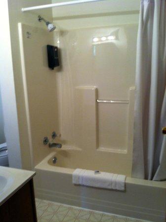 Yough Plaza Motel: bathroom