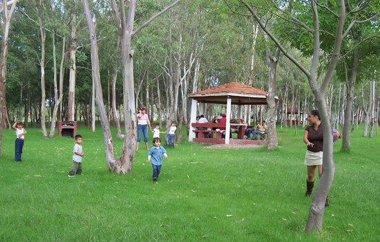 坦加盟那公园