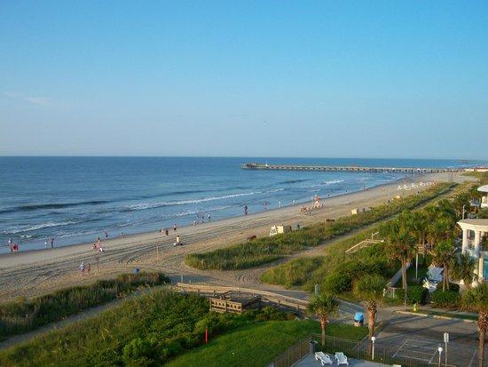 Tropical Seas Hotel : Beach and Pier