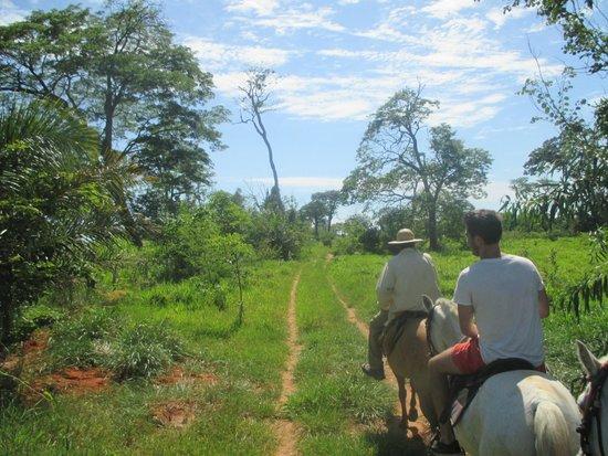 Fazenda Baia Grande: Grounds