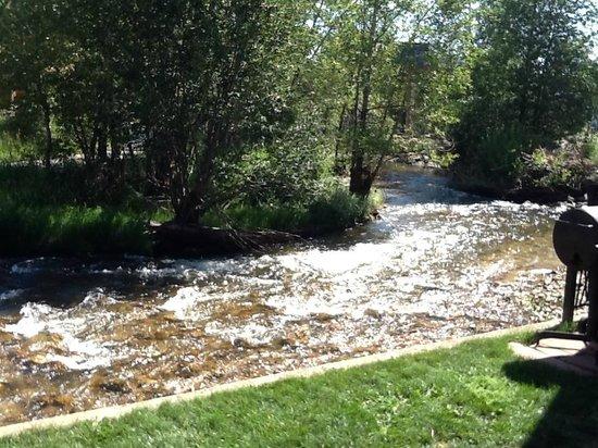 Murphy's River Lodge: vue de la rivière