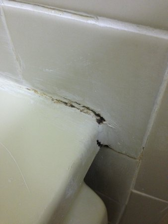 ويستجيت تاون سنتر: More mold around bathtub