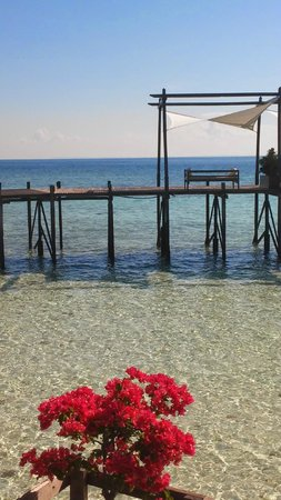 Lankayan Island Dive Resort : Hamacas