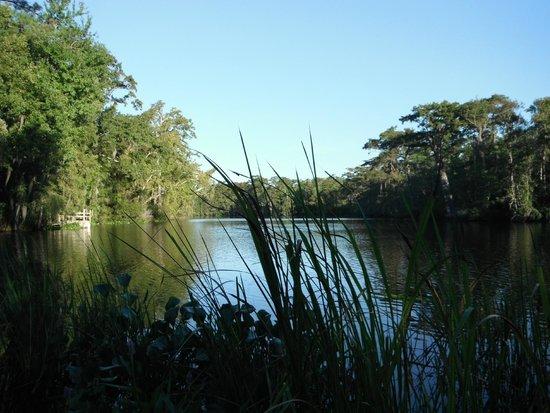 Pawley S Island Pros Cons