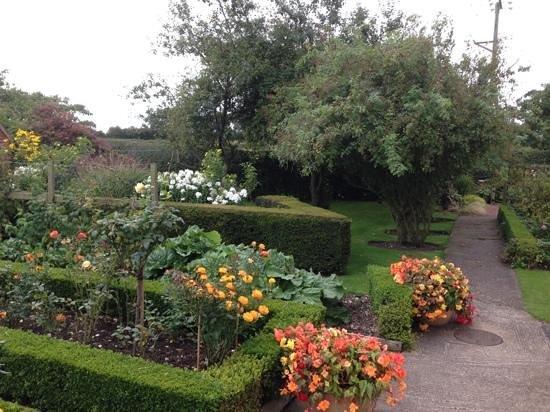Marsh Farm Bed & Breakfast: Gardens