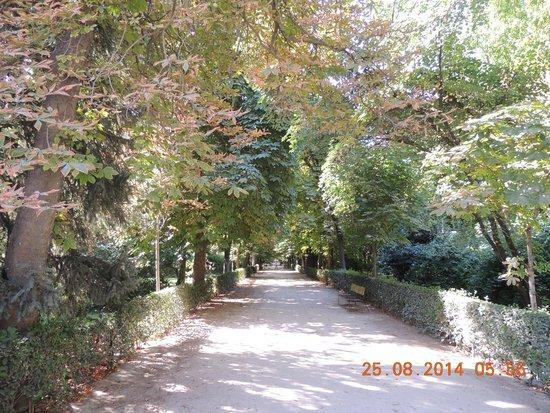 Parque del Retiro: 3