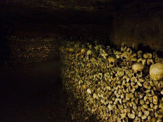 The Catacombs of Paris: Bones