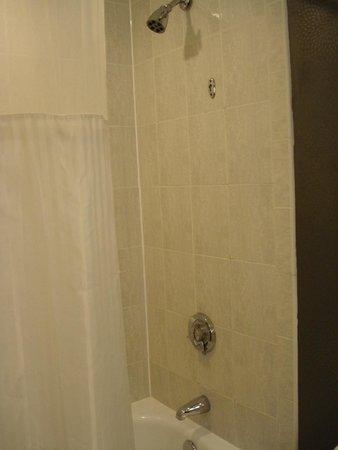 Hilton Boston Back Bay : Bathroom