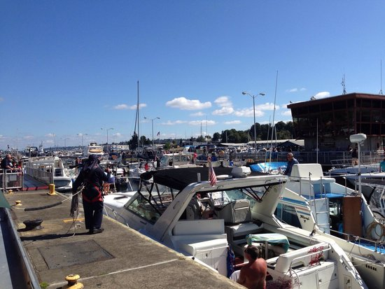 Hiram M. Chittenden Locks: The lock full of boats head to Lake Washington.