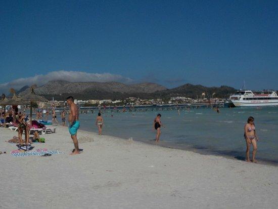 Port dAlcúdia - Bild von Playa de Alcudia, Port dAlcúdia - TripAdvisor
