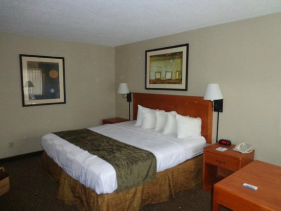 The Downtown Duluth Motel: room 103