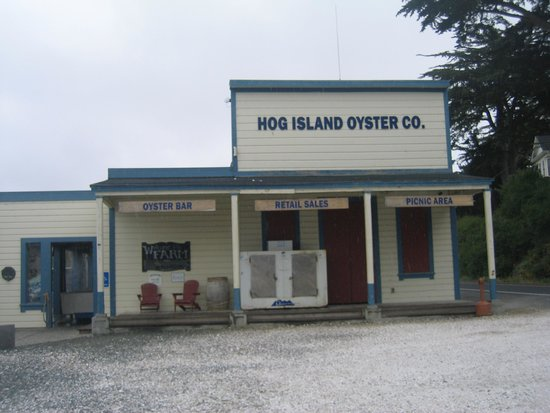 Tomales Bay State Park: Hog Island Oysters