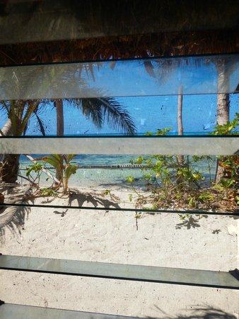 Gold Coast Inn: vue sur la plage de la case