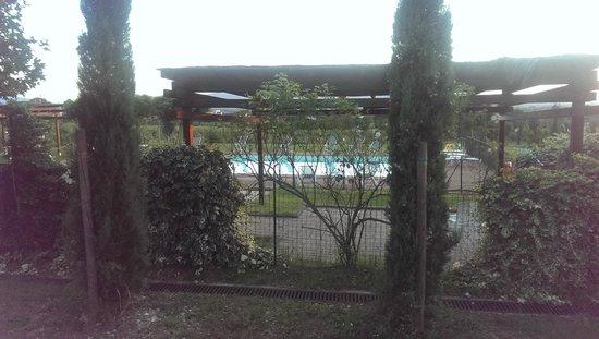 Agriturismo Sasso Rosso: piscina