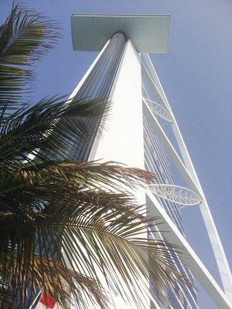 Burj Al Arab Jumeirah: 一階プール