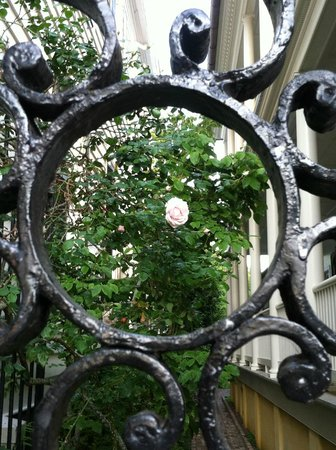 "Days Inn Charleston Historic District : Through ""the looking glass"""