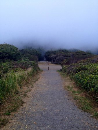 Yachats in the fog