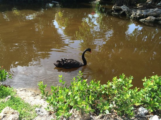 Periwinkle Park & Campground: Cooling off