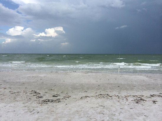 Periwinkle Park & Campground: Clean beach!