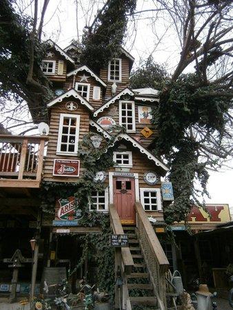 Bravo Farms Tree House