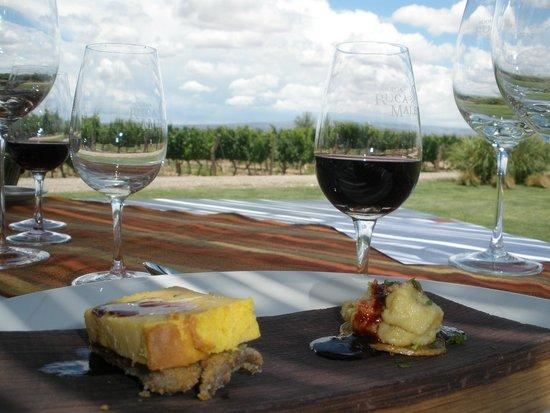 Bodega Ruca Malen : Diferentes vinos desde la gama media hasta gama alta de la bodega