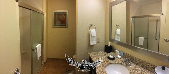 Hampton Inn Dandridge : Bath