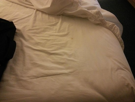 1st Choice Inn of Rawlins: Lovely Stained Bedsheet
