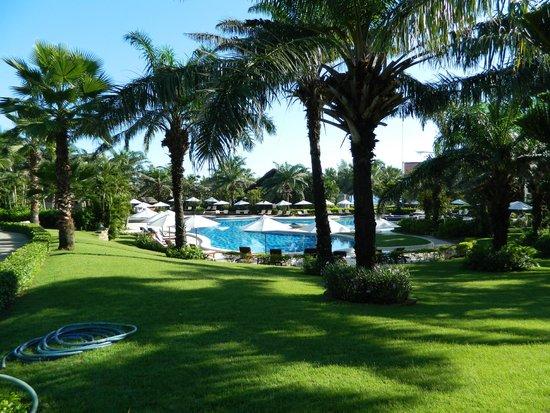Palm Garden Beach Resort & Spa : Pool area