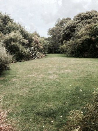 Ventnor Botanic Garden: New Zealand Garden