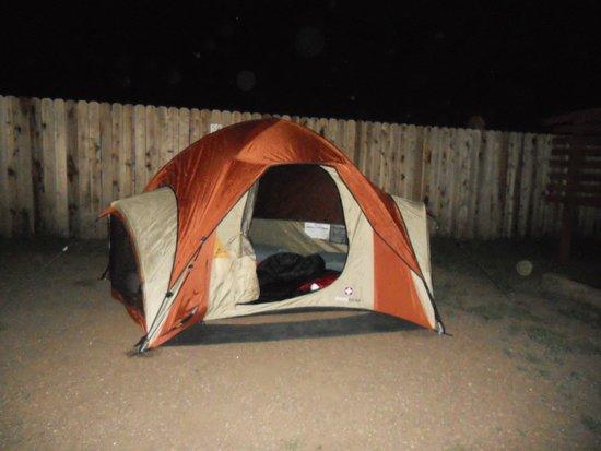 Grand Canyon / Williams KOA : Camping