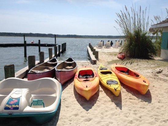 Snug Harbor Marina Boat Rentals: Lots of boats to choose from (but choose the kayaks!)