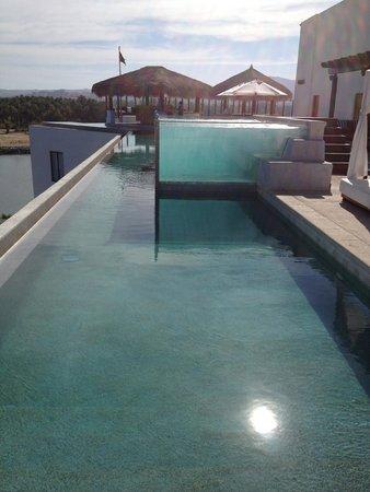 Hotel El Ganzo: Rooftop Infinity Pool