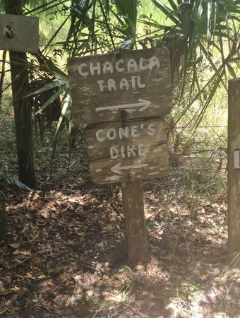Paynes Prairie Preserve State Park: Sign off of the trail head.