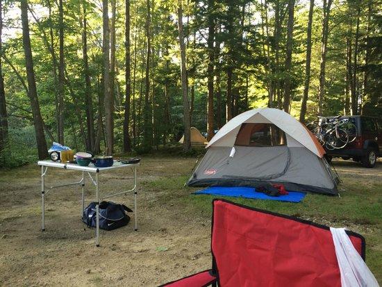 Wild Duck Campground & RV Park, Inc: T1 tent site