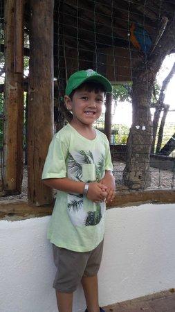 Arraial D'Ajuda Eco Resort: Araras