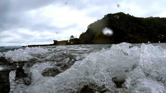 Goat Island Marine Reserve: Less than optimal snorkeling conditions