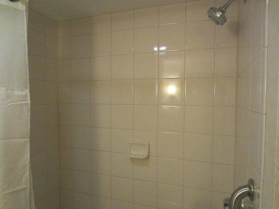 Decent-sized bathroom