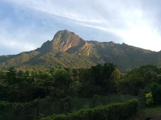 Mt. Mocchomudake : 早朝のモッチョム岳