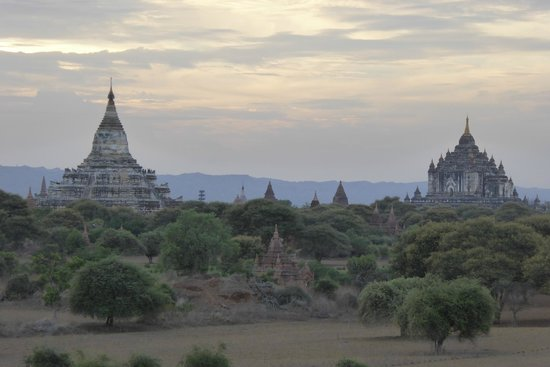 Thande Hotel Bagan : Temples of Bagan