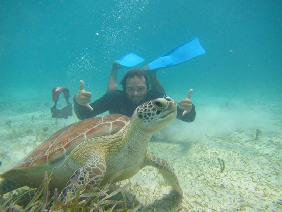 Kayaking Puerto Rico: Norm